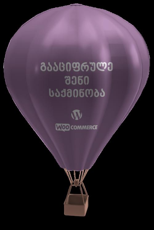 Air_Balloon-685x1024